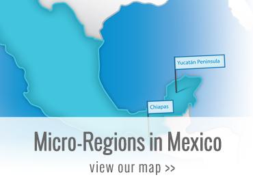 Micro-Regions in Mexico
